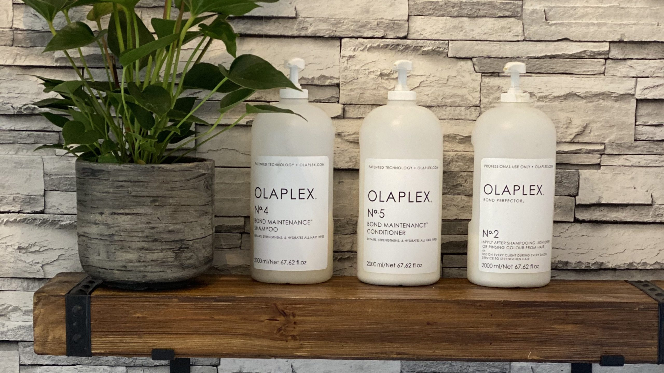 Olaplex at The Gardens Salon Biddulph